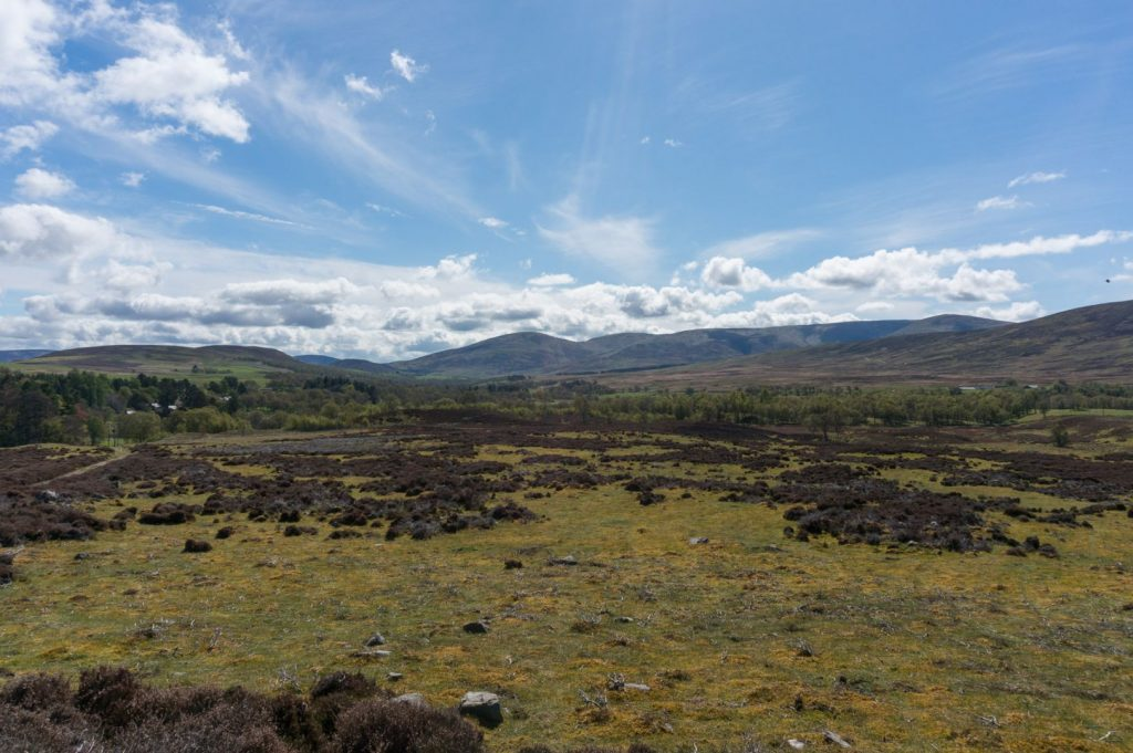 Off-Roading with Glen Esk Wildlife Tours - Traveling Savage